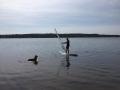 Surfkurs und SUP Seeburg
